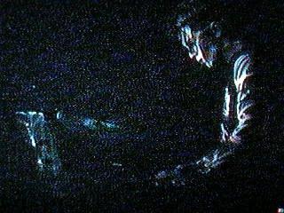 Testube Live 1997