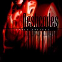 Wrack Process - Fleshcodes